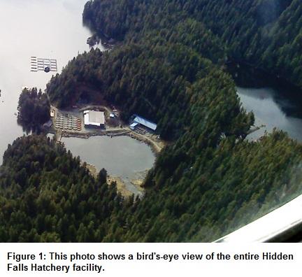 Figure-1-Hidde-Falls-Hatchery-facility